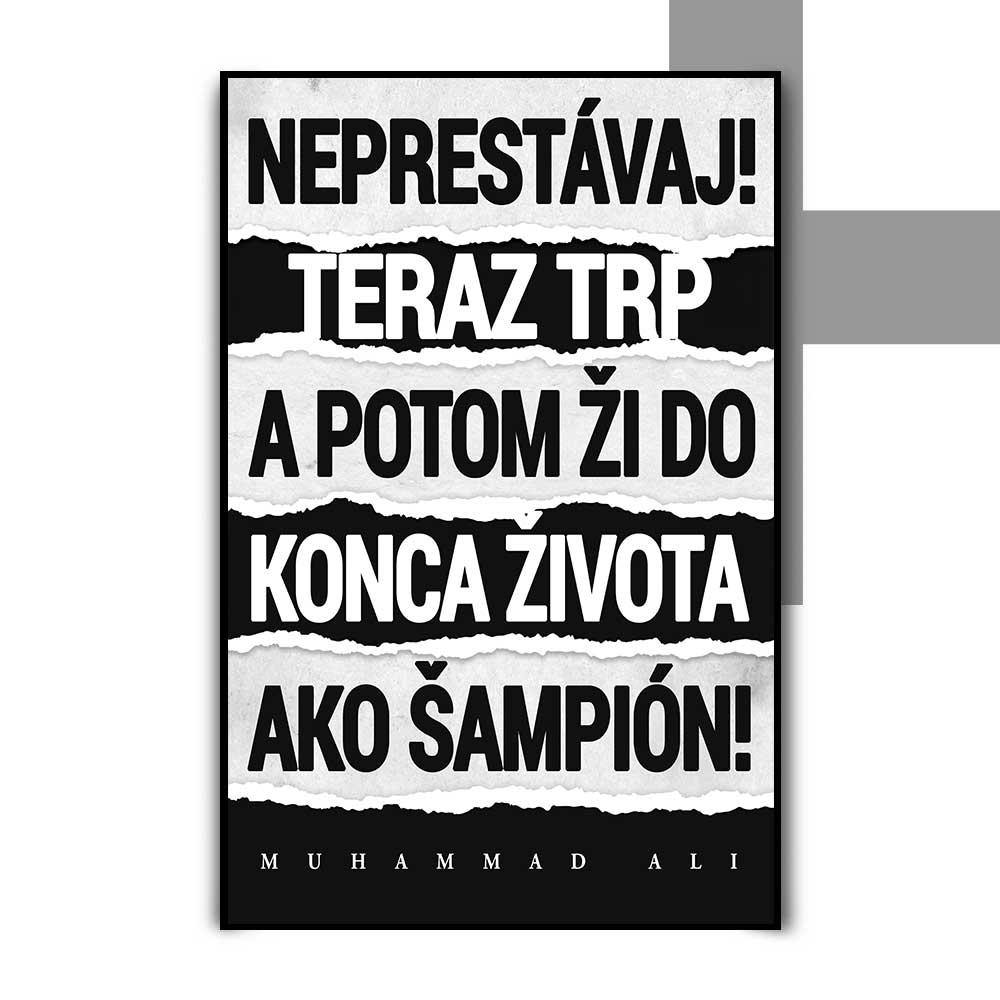 Motivačný plagát - Ali