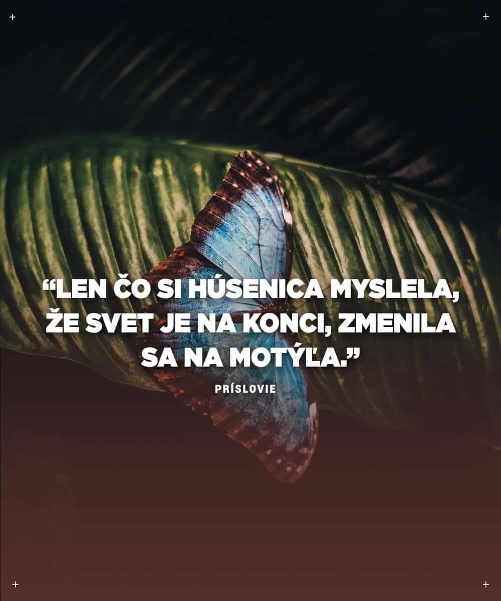 Len čo si húsenica pomyslela, že je svet na konci, zmenila sa na motýľa - najlepšie motivačné citáty
